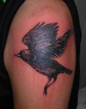 Tatouage corbeau