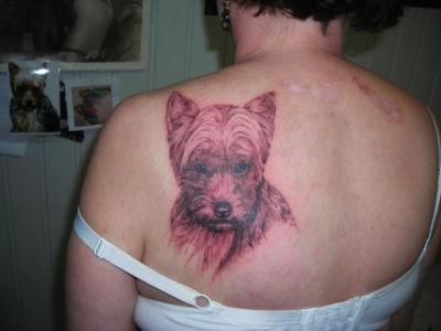 Tatouage portrait chien